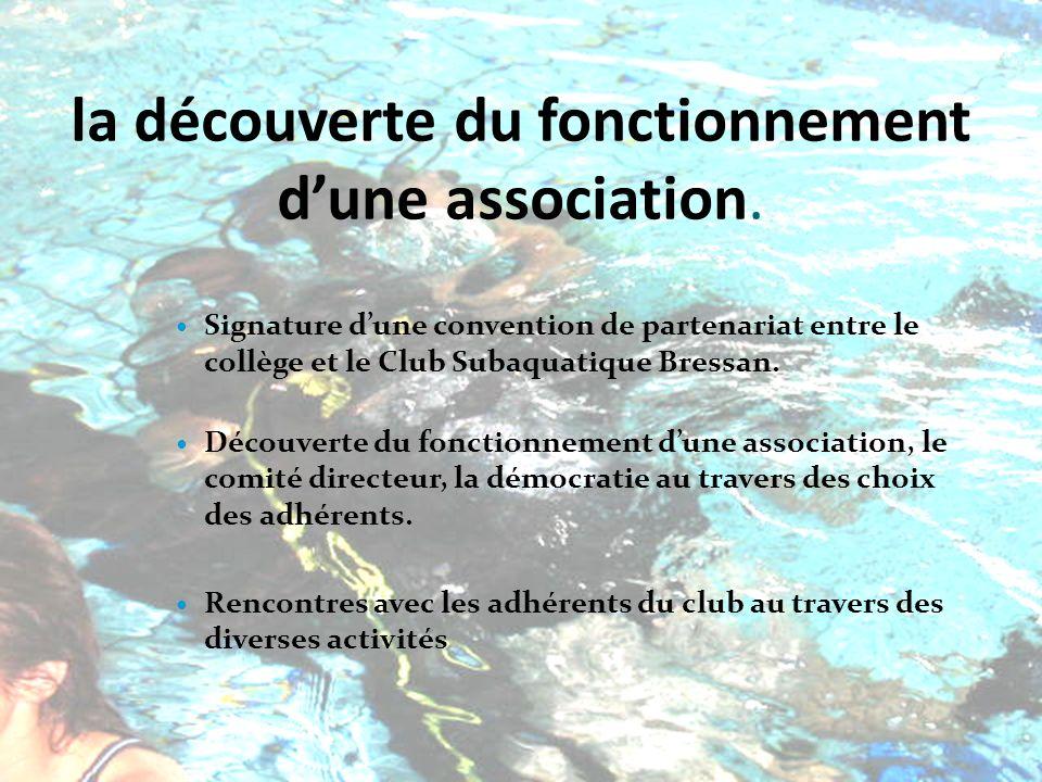 la découverte du fonctionnement dune association.