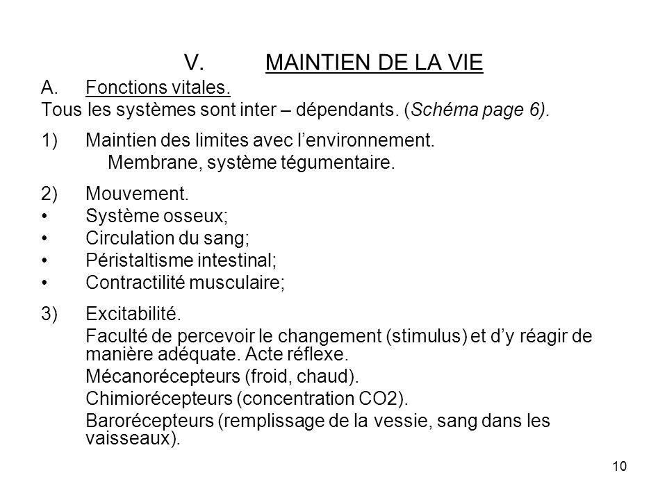 10 V.MAINTIEN DE LA VIE A.Fonctions vitales.Tous les systèmes sont inter – dépendants.