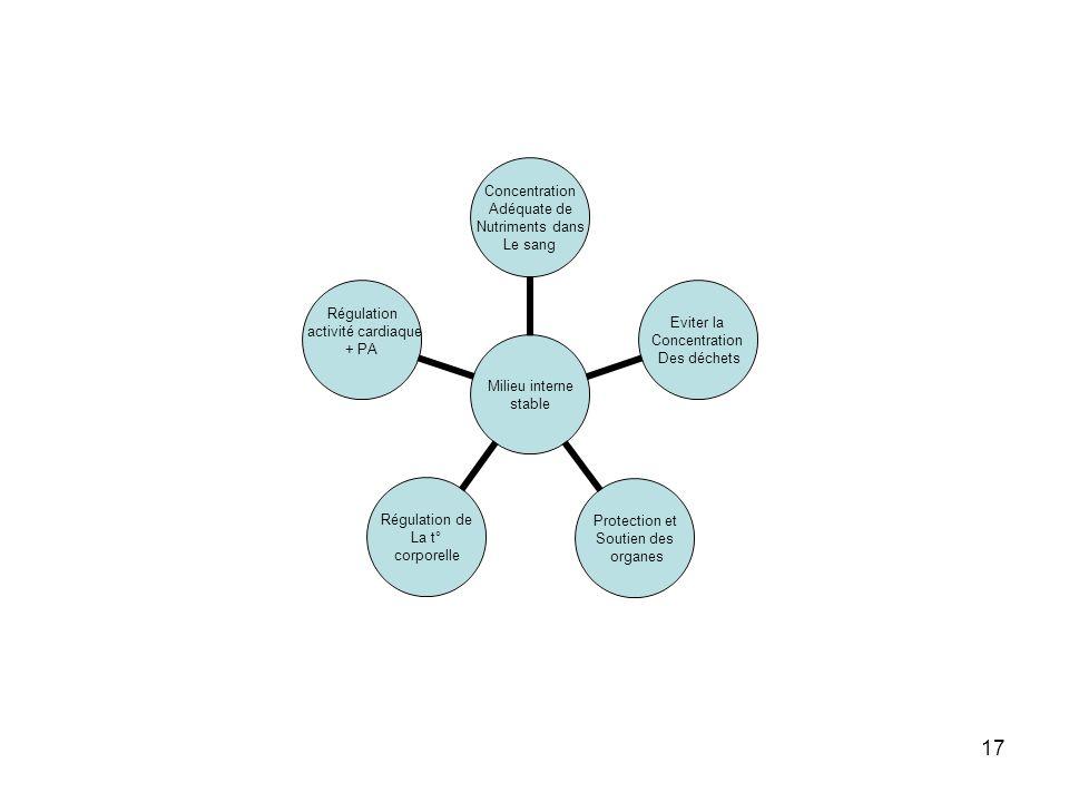 17 Milieu interne stable Concentration Adéquate de Nutriments dans Le sang Eviter la Concentration Des déchets Protection et Soutien des organes Régulation de La t° corporelle Régulation activité cardiaque + PA