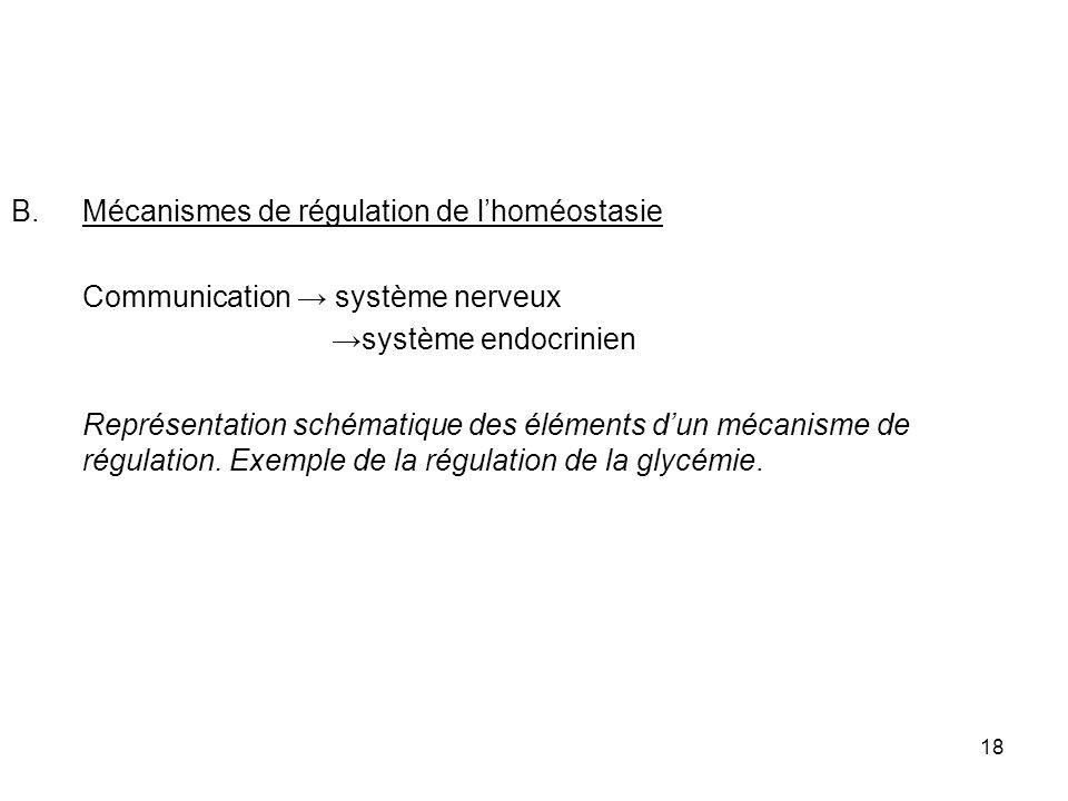 18 B.Mécanismes de régulation de lhoméostasie Communication système nerveux système endocrinien Représentation schématique des éléments dun mécanisme de régulation.