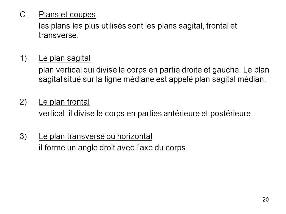 20 C.Plans et coupes les plans les plus utilisés sont les plans sagital, frontal et transverse.