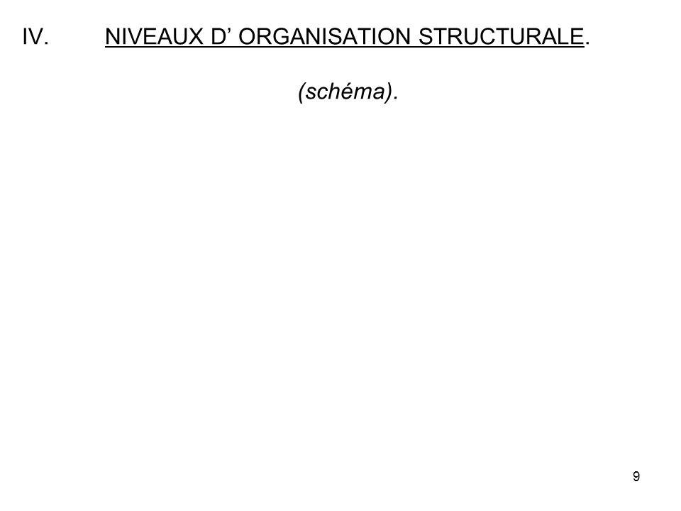 9 IV.NIVEAUX D ORGANISATION STRUCTURALE. (schéma).