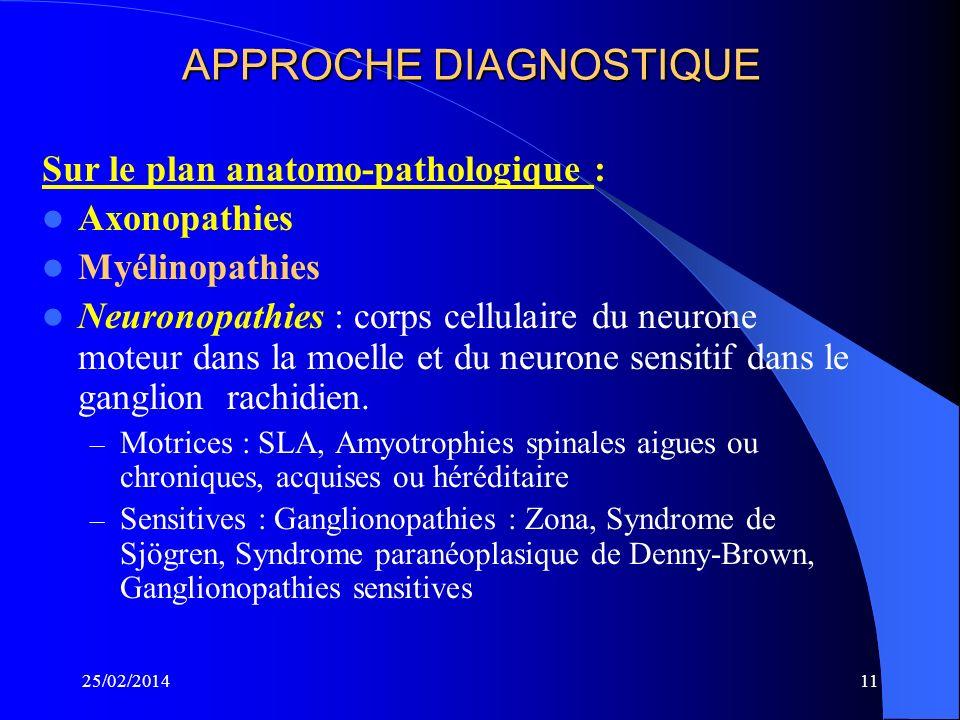 10 APPROCHE DIAGNOSTIQUE Selon la Topographie Polyneuropathies diffuses – Polyneuropathie longueur dépendante – Mononeuropathie tronculaire multiples