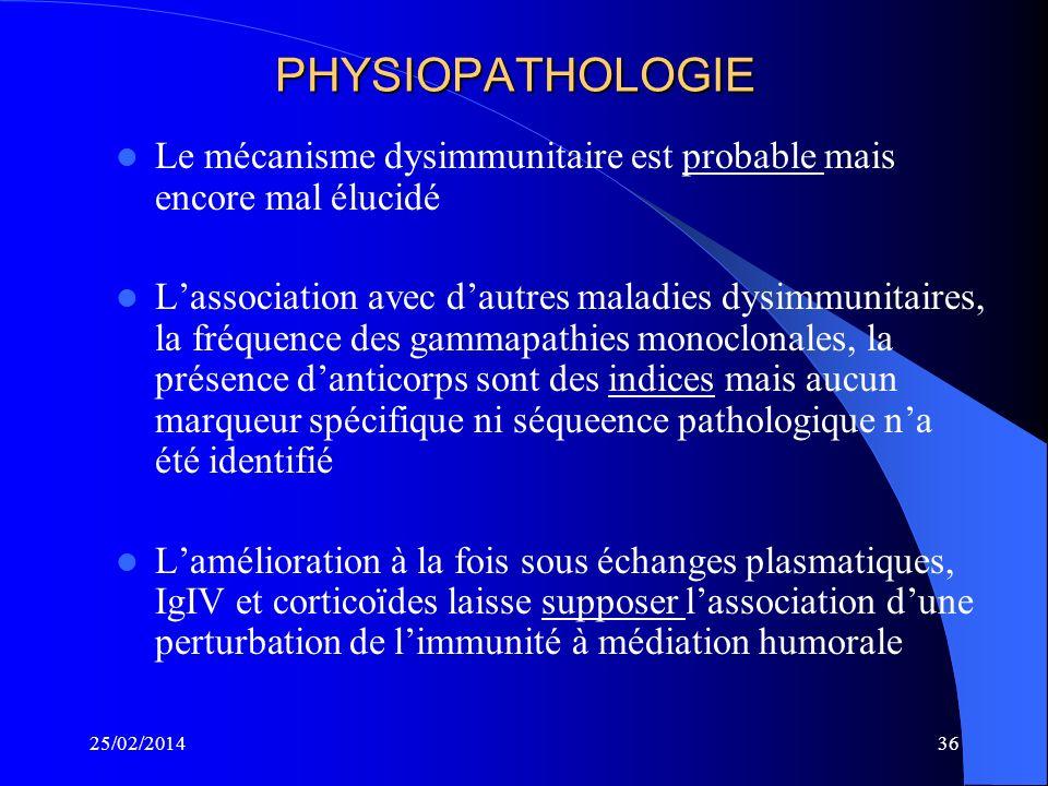 25/02/201435 BIOPSIE NERVEUSE En 1975, Dyck a décrit les lésions : – Démyélinisation segmentaire – Prolifération schwannienne en bulbes doignons – Œdè