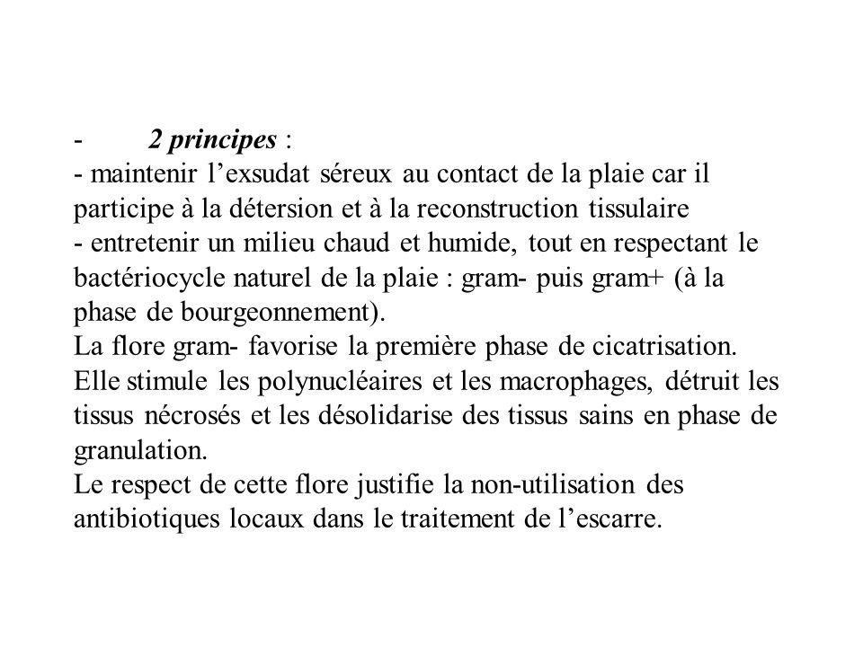 - 2 principes : - maintenir lexsudat séreux au contact de la plaie car il participe à la détersion et à la reconstruction tissulaire - entretenir un m