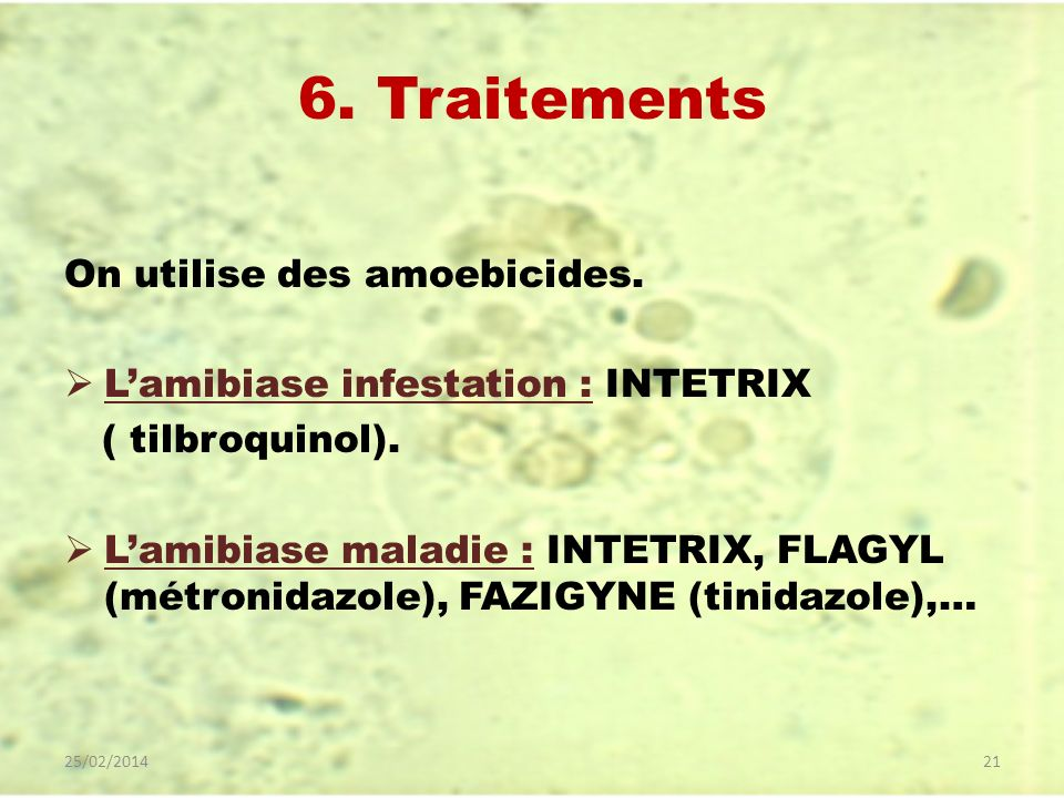 6. Traitements On utilise des amoebicides. Lamibiase infestation : INTETRIX ( tilbroquinol). Lamibiase maladie : INTETRIX, FLAGYL (métronidazole), FAZ