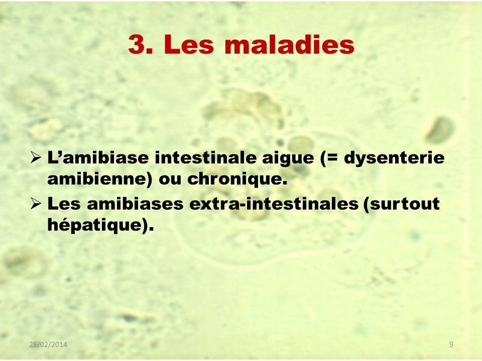 3. Les maladies Lamibiase intestinale aigue (= dysenterie amibienne) ou chronique. Les amibiases extra-intestinales (surtout hépatique). 25/02/20149