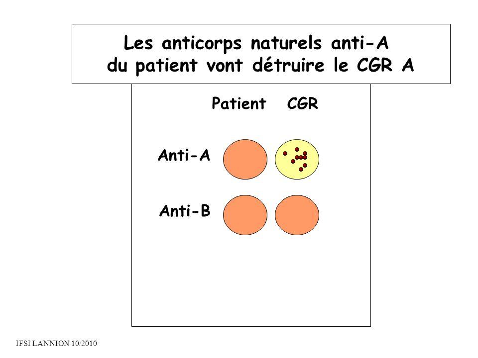 PatientCGR Anti-A Anti-B Les anticorps naturels anti-A du patient vont détruire le CGR A IFSI LANNION 10/2010