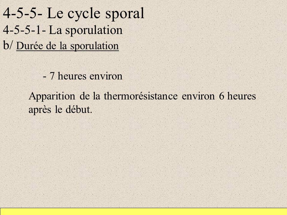 4-5-5- Le cycle sporal 4-5-5-1- La sporulation b/ Durée de la sporulation - 7 heures environ Apparition de la thermorésistance environ 6 heures après