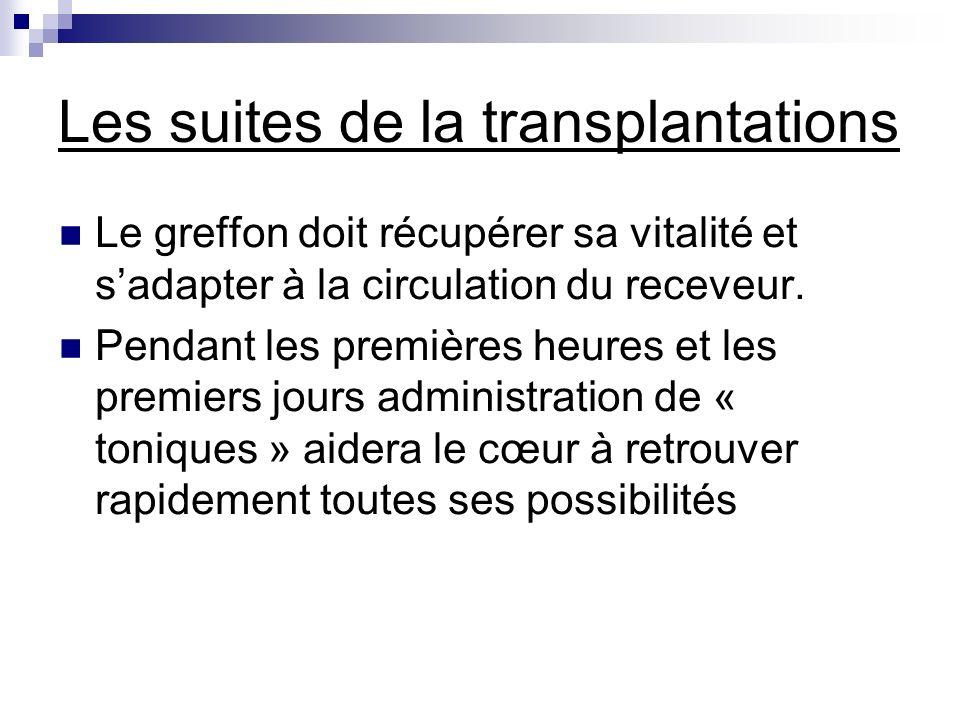 Les suites de la transplantations Le greffon doit récupérer sa vitalité et sadapter à la circulation du receveur. Pendant les premières heures et les