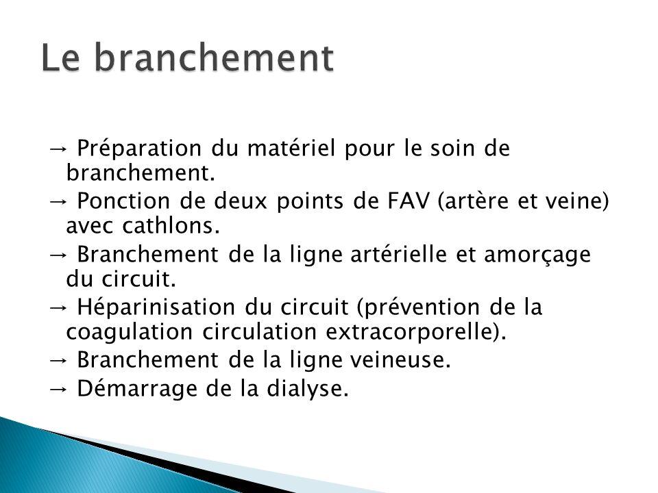 Préparation du matériel pour le soin de branchement. Ponction de deux points de FAV (artère et veine) avec cathlons. Branchement de la ligne artériell