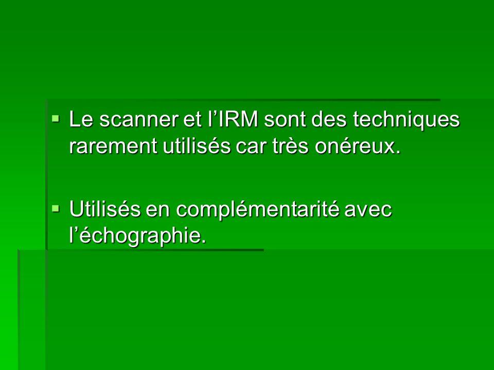 Le scanner et lIRM sont des techniques rarement utilisés car très onéreux. Le scanner et lIRM sont des techniques rarement utilisés car très onéreux.