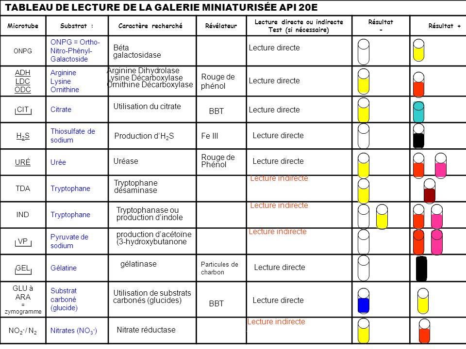 TABLEAU DE LECTURE DE LA GALERIE MINIATURISÉE API 20E MicrotubeSubstrat :Caractère recherché Révélateur Lecture directe ou indirecte Test (si nécessai