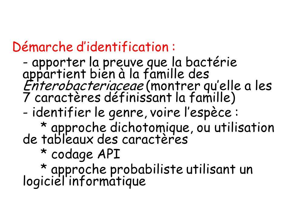 Démarche didentification : - apporter la preuve que la bactérie appartient bien à la famille des Enterobacteriaceae (montrer quelle a les 7 caractères