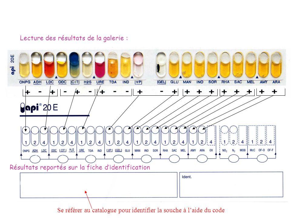 5 2 1 5 7 7 3 5 + + - Code n°: 5 215 773 (55) + + 5 5- Identification de la souche Se référer au catalogue pour identifier la souche à laide du code L