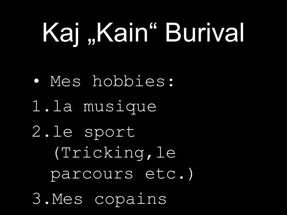 Mes hobbies: 1.la musique 2.le sport (Tricking,le parcours etc.) 3.Mes copains Mon instrument: Le keyboard (Korg TR 76) Mon groupe de metal: Audiophilia Ma sorte de metal: Melodic/Powermetal Kaj Kain Burival