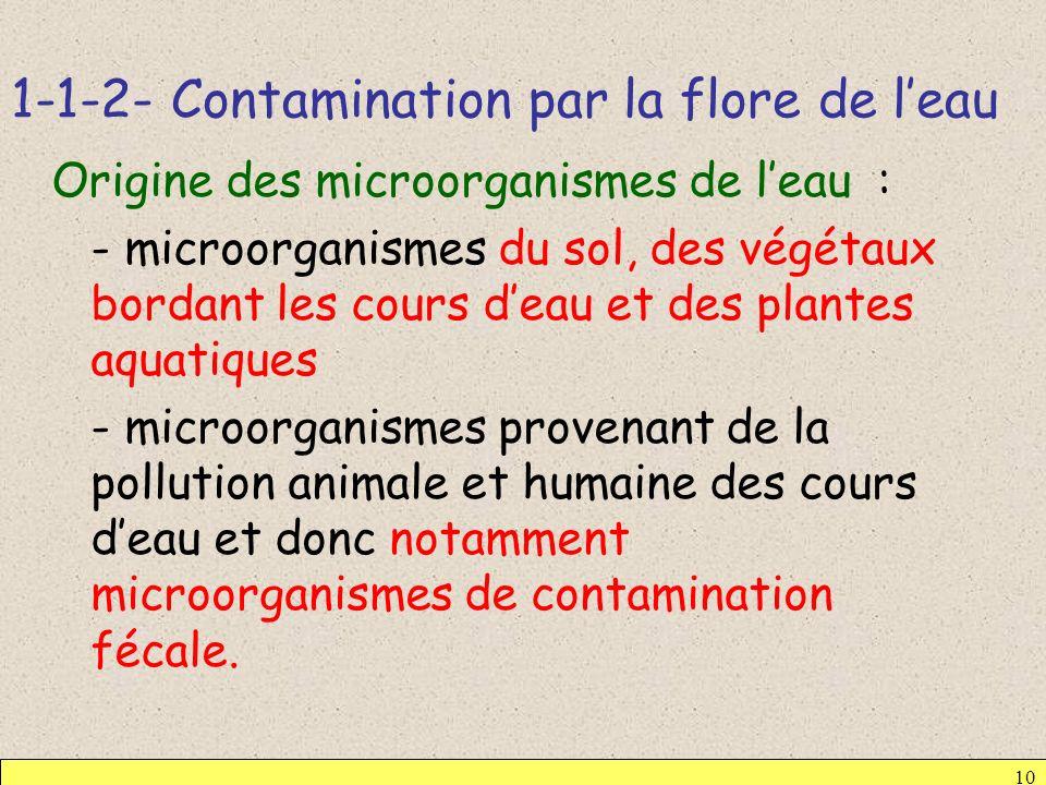 1-1-2- Contamination par la flore de leau 10 Origine des microorganismes de leau : - microorganismes du sol, des végétaux bordant les cours deau et de