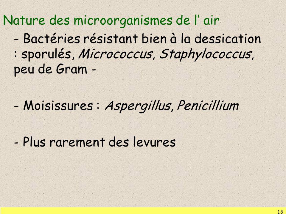 Nature des microorganismes de l air - Bactéries résistant bien à la dessication : sporulés, Micrococcus, Staphylococcus, peu de Gram - - Moisissures :