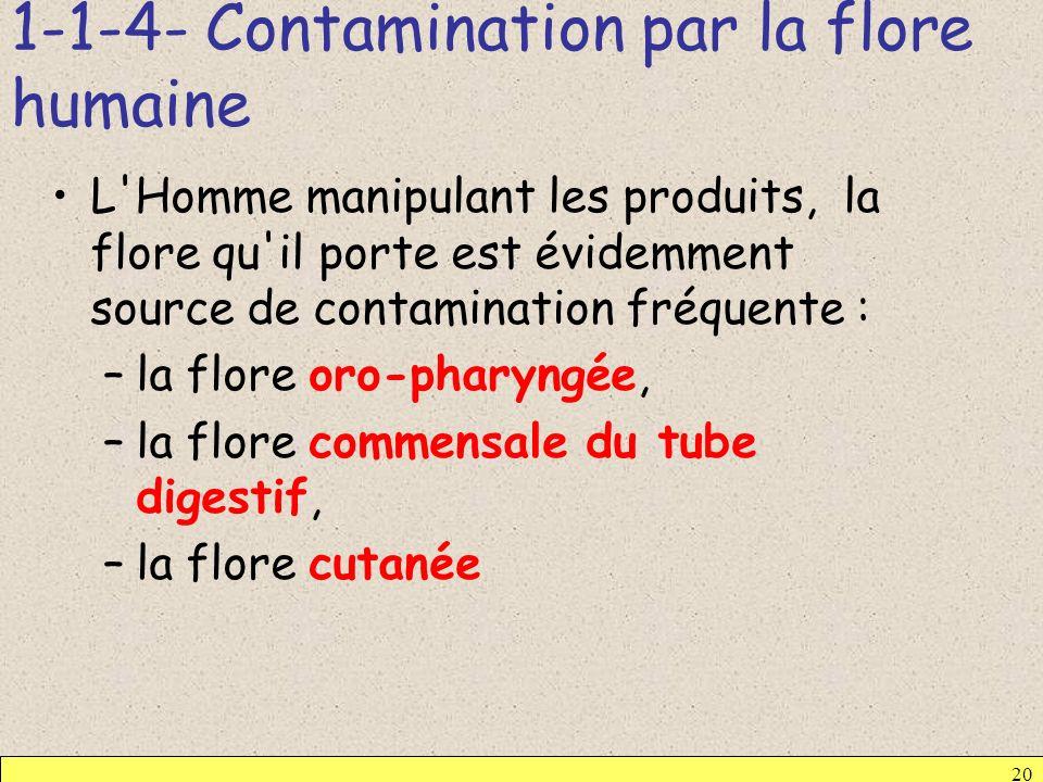 1-1-4- Contamination par la flore humaine 20 L'Homme manipulant les produits, la flore qu'il porte est évidemment source de contamination fréquente :