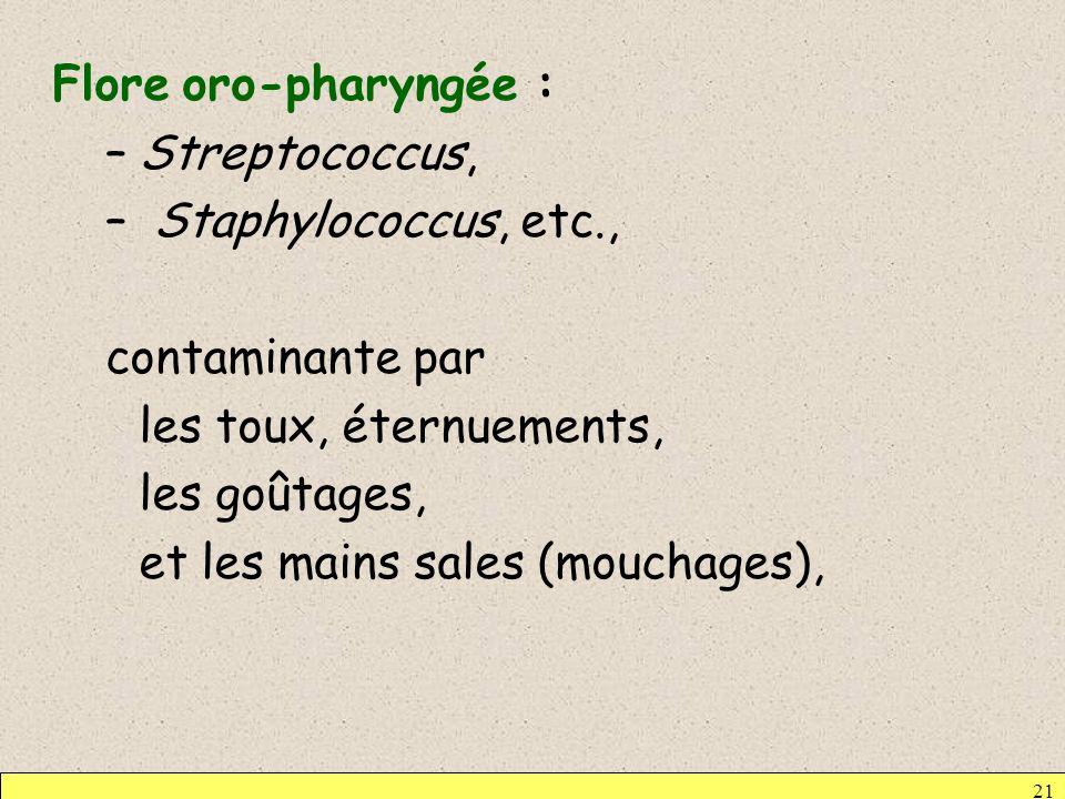 21 Flore oro-pharyngée : –Streptococcus, – Staphylococcus, etc., contaminante par les toux, éternuements, les goûtages, et les mains sales (mouchages)