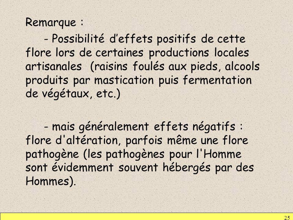 25 Remarque : - Possibilité deffets positifs de cette flore lors de certaines productions locales artisanales (raisins foulés aux pieds, alcools produ