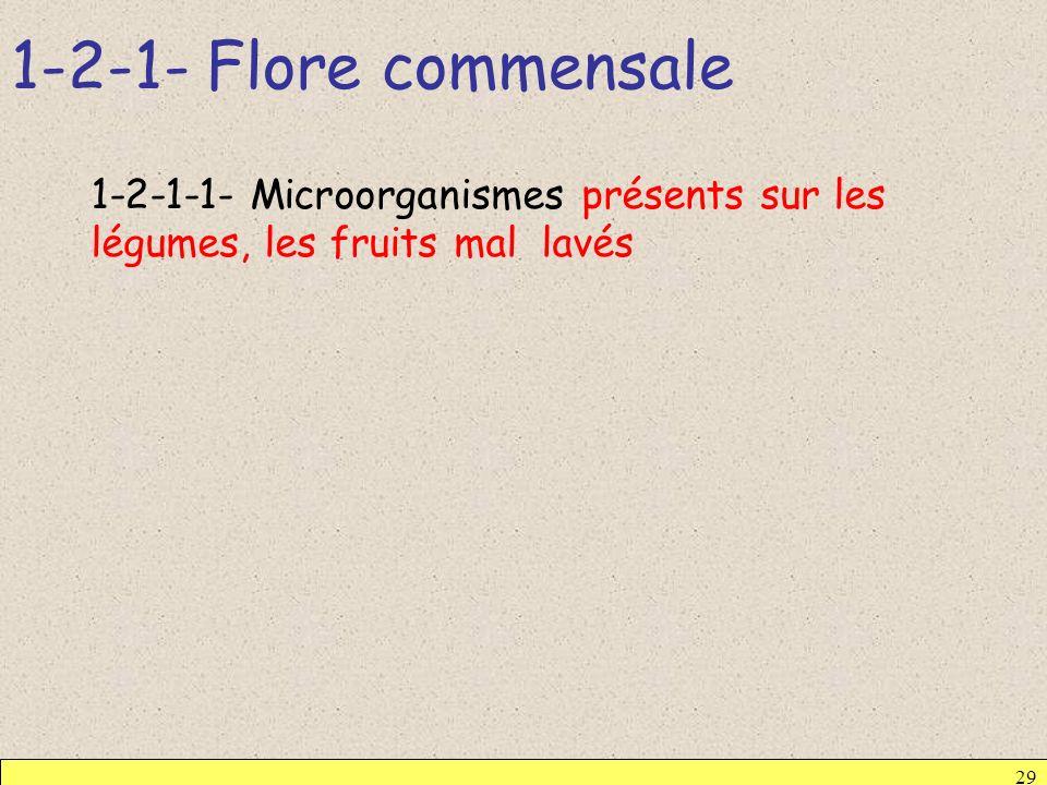 1-2-1- Flore commensale 29 1-2-1-1- Microorganismes présents sur les légumes, les fruits mal lavés