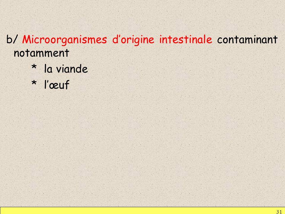 31 b/ Microorganismes dorigine intestinale contaminant notamment * la viande * lœuf