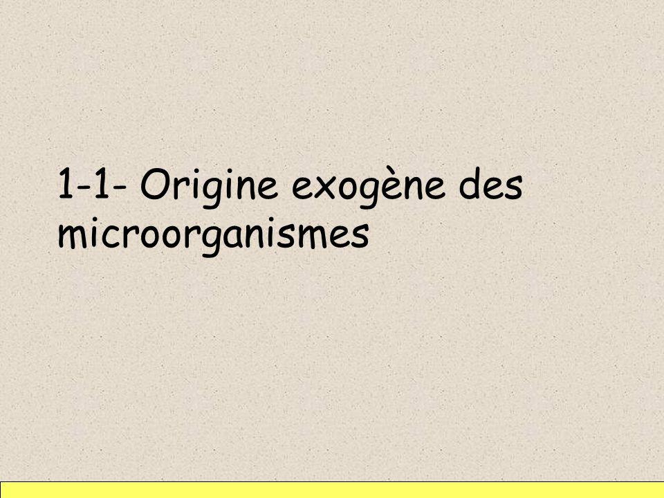 1-1- Origine exogène des microorganismes