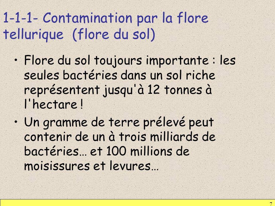 1-1-1- Contamination par la flore tellurique (flore du sol) 7 Flore du sol toujours importante : les seules bactéries dans un sol riche représentent j