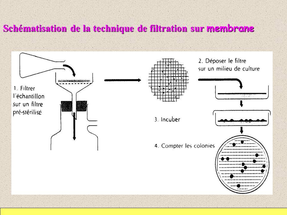 Schématisation de la technique de filtration sur membrane