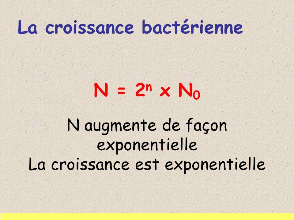 La croissance bactérienne N = 2 n x N 0 N augmente de façon exponentielle La croissance est exponentielle