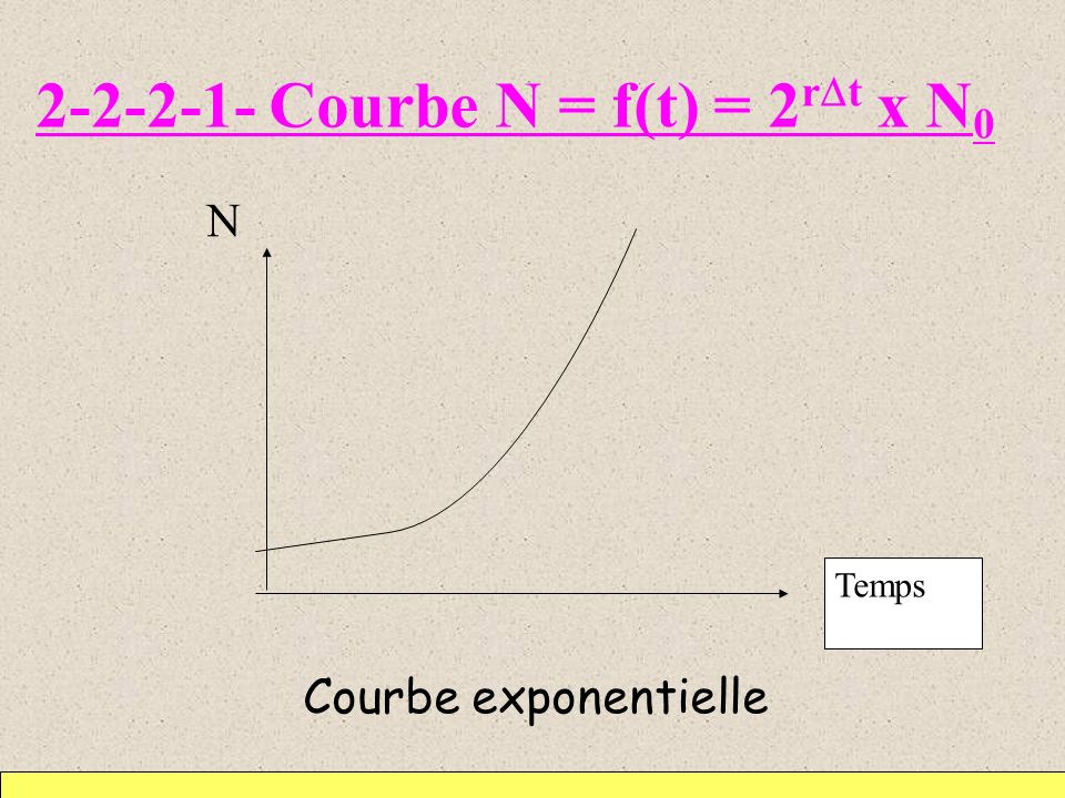 2-2-2-1- Courbe N = f(t) = 2 r t x N 0 N Courbe exponentielle Temps