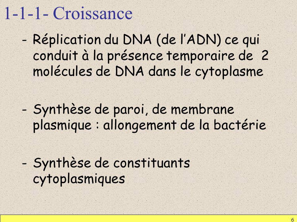 1-1-1- Croissance -Réplication du DNA (de lADN) ce qui conduit à la présence temporaire de 2 molécules de DNA dans le cytoplasme -Synthèse de paroi, d