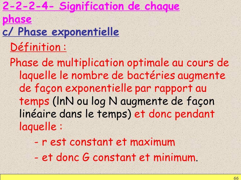 2-2-2-4- Signification de chaque phase c/ Phase exponentielle Définition : Phase de multiplication optimale au cours de laquelle le nombre de bactérie