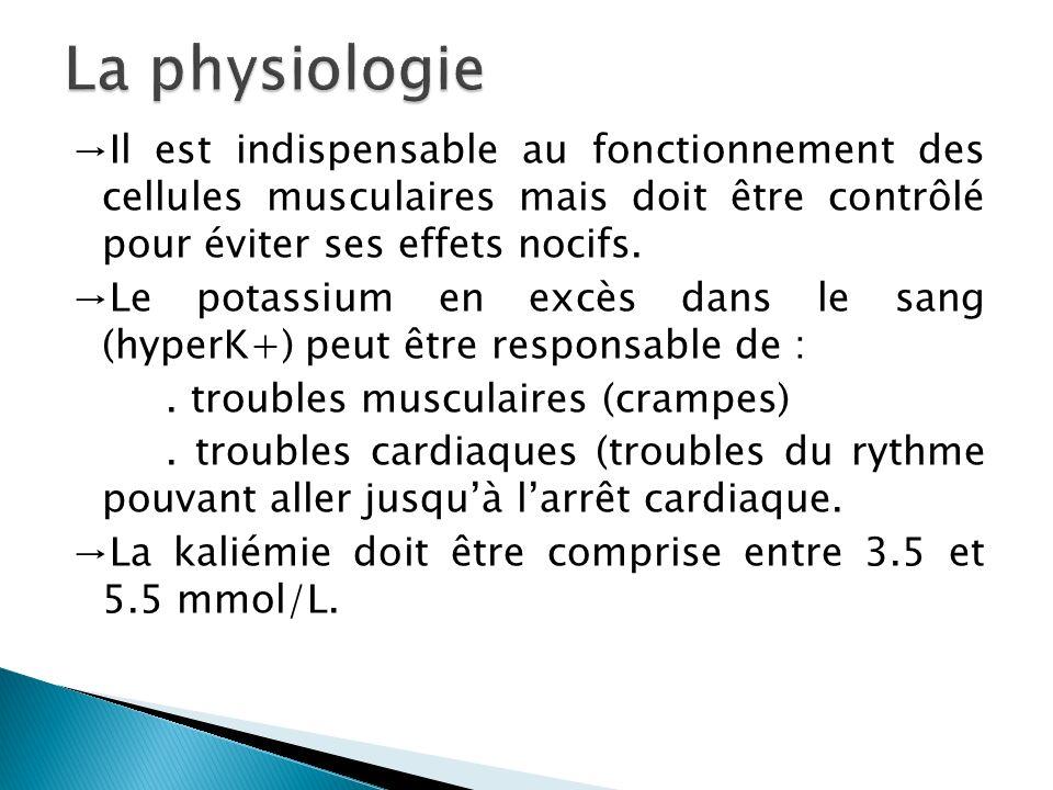 Il est indispensable au fonctionnement des cellules musculaires mais doit être contrôlé pour éviter ses effets nocifs. Le potassium en excès dans le s