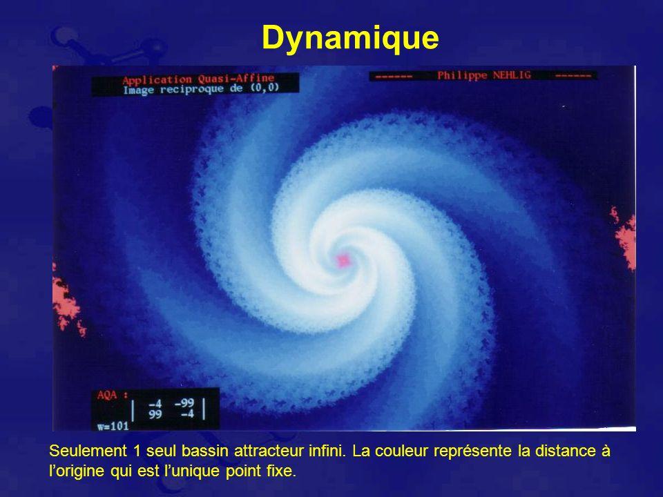 Dynamique Seulement 1 seul bassin attracteur infini.