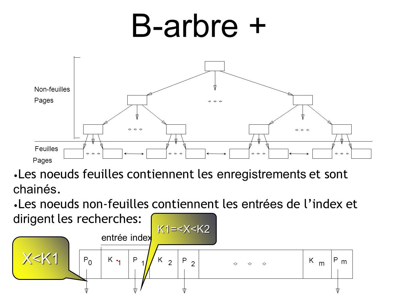 B-arbre + Les noeuds feuilles contiennent les enregistrements et sont chainés.