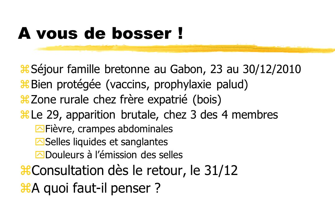 A vous de bosser ! zSéjour famille bretonne au Gabon, 23 au 30/12/2010 zBien protégée (vaccins, prophylaxie palud) zZone rurale chez frère expatrié (b