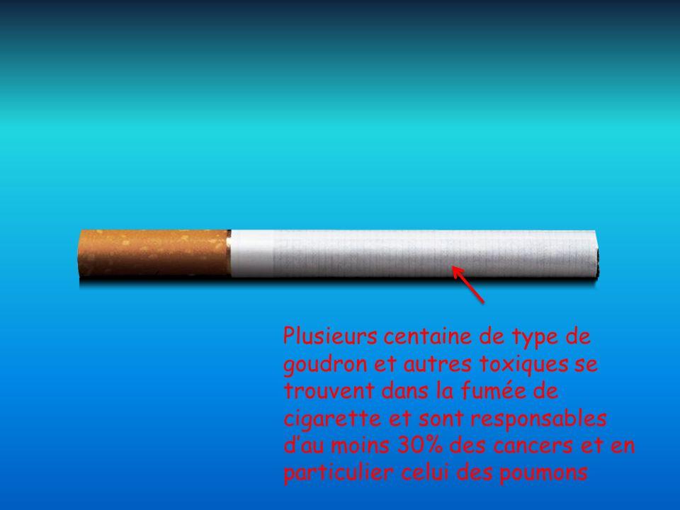 Plusieurs centaine de type de goudron et autres toxiques se trouvent dans la fumée de cigarette et sont responsables dau moins 30% des cancers et en p