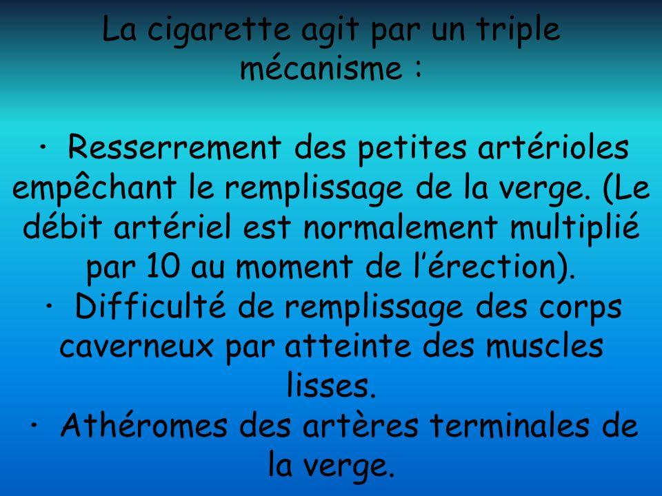 La cigarette agit par un triple mécanisme : · Resserrement des petites artérioles empêchant le remplissage de la verge. (Le débit artériel est normale
