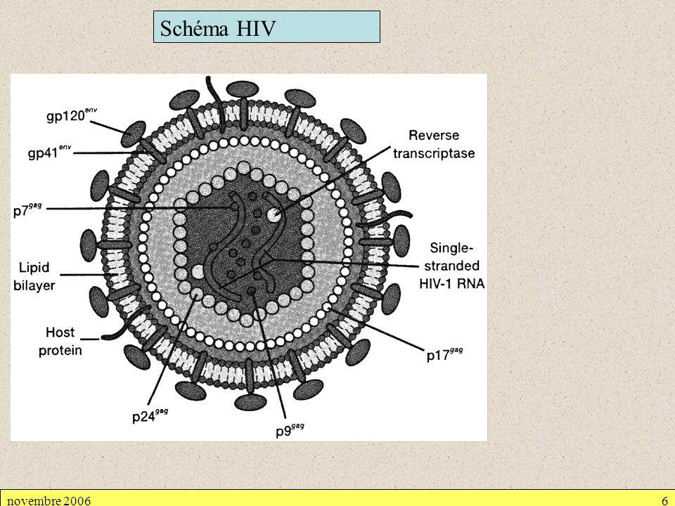 novembre 20066 Schéma HIV