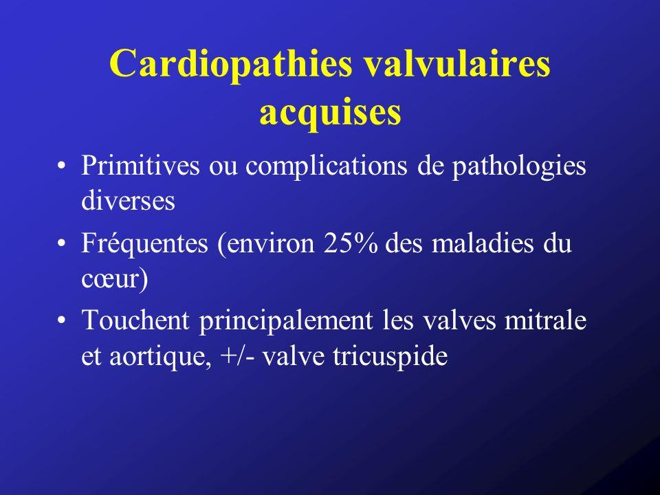 Cardiopathies valvulaires acquises Primitives ou complications de pathologies diverses Fréquentes (environ 25% des maladies du cœur) Touchent principa