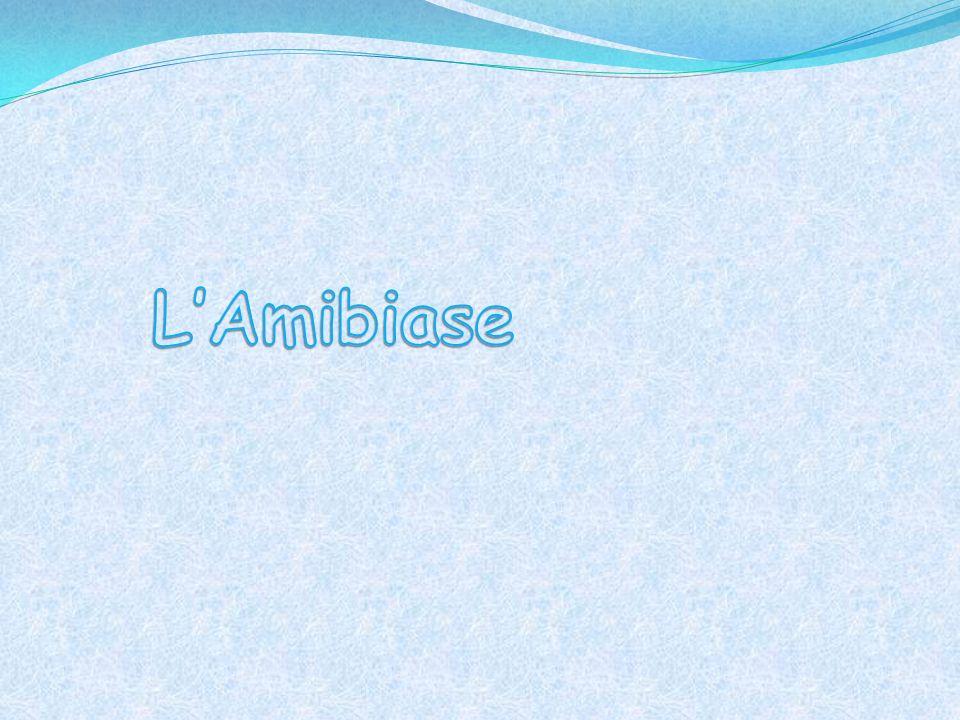 l amibiase...32 Kyste mature Division des : obtention de 8 amoebules (petites amibes) Lamibe migre dans le colon Multiplication par sisciparité excision Kyste immature Kyste mature à 4 noyaux Cycle dinfestation Les kyste sont éliminés dans les selles Ingestion daliment ou deau contaminé Cycle pathogène Invasion foie, poumon et cerveau via la circulation sanguine