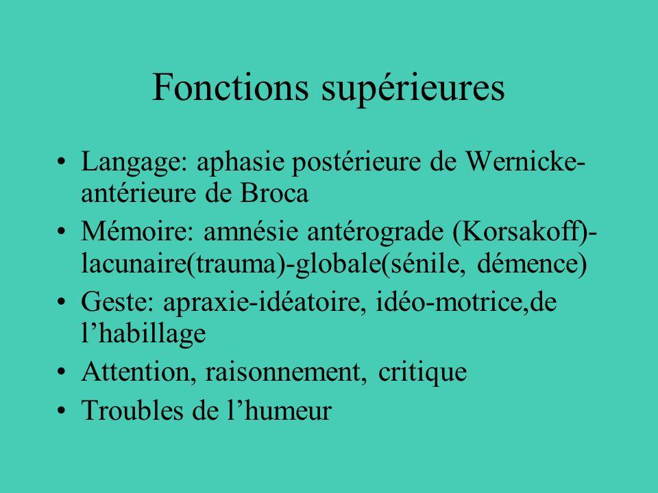 Fonctions supérieures Langage: aphasie postérieure de Wernicke- antérieure de Broca Mémoire: amnésie antérograde (Korsakoff)- lacunaire(trauma)-global