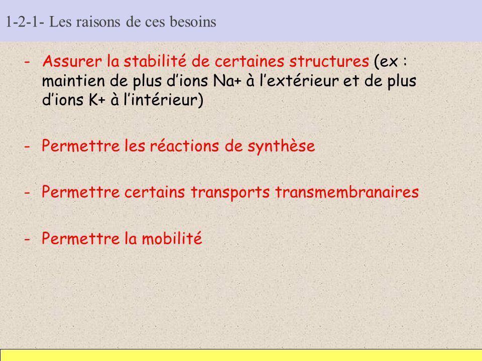 1-2-1- Les raisons de ces besoins -Assurer la stabilité de certaines structures (ex : maintien de plus dions Na+ à lextérieur et de plus dions K+ à li