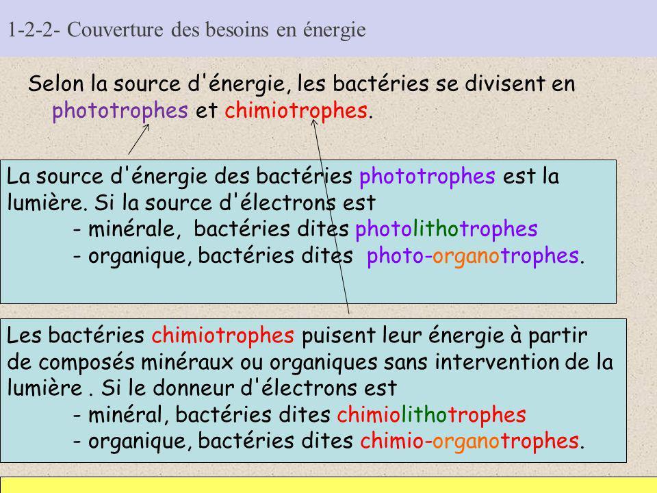 1-2-2- Couverture des besoins en énergie Selon la source d'énergie, les bactéries se divisent en phototrophes et chimiotrophes. La source d'énergie de