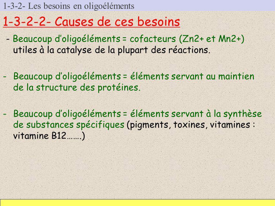 1-3-2- Les besoins en oligoéléments 1-3-2-2- Causes de ces besoins - Beaucoup doligoéléments = cofacteurs (Zn2+ et Mn2+) utiles à la catalyse de la pl