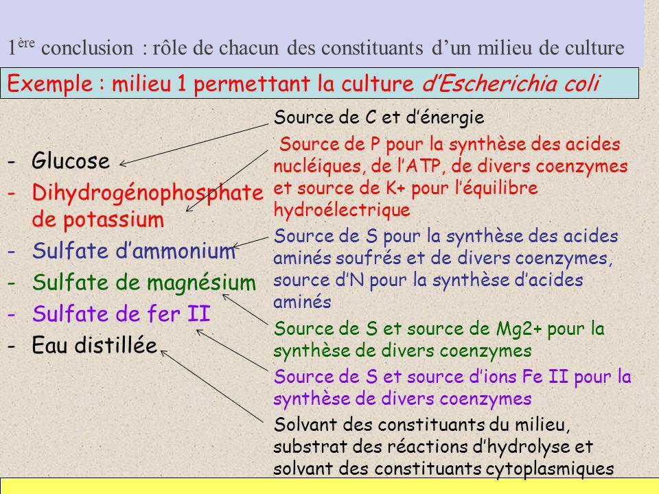 1 ère conclusion : rôle de chacun des constituants dun milieu de culture -Glucose -Dihydrogénophosphate de potassium -Sulfate dammonium -Sulfate de ma
