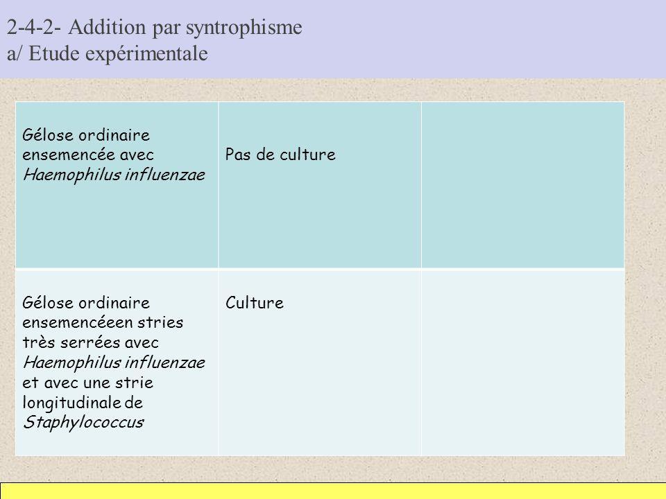2-4-2- Addition par syntrophisme a/ Etude expérimentale Gélose ordinaire ensemencée avec Haemophilus influenzae Pas de culture Gélose ordinaire enseme