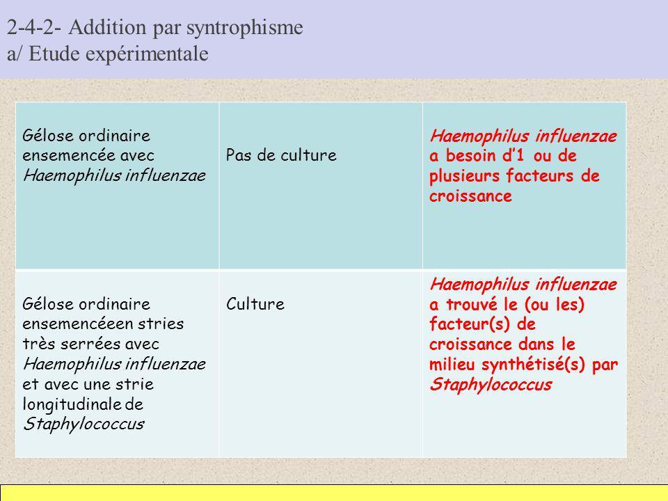 2-4-2- Addition par syntrophisme a/ Etude expérimentale Gélose ordinaire ensemencée avec Haemophilus influenzae Pas de culture Haemophilus influenzae